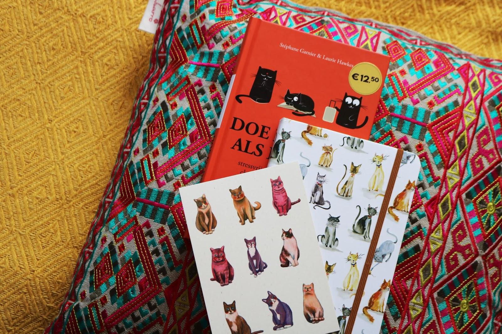 5 redenen waarom een dagboek bijhouden zo fijn is