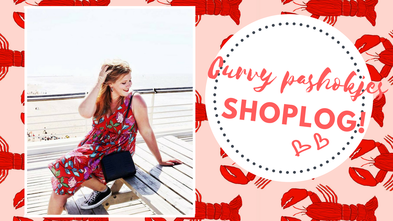 Curvy pashokjes shoplog | Fabienne Chapot, &Other Stories, we fashion & Monki #2