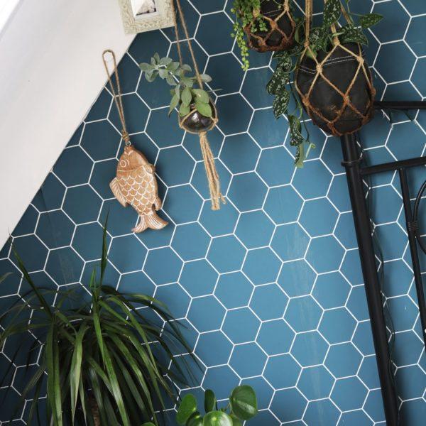 6x mijn favoriete plantjes voor in je interieur!