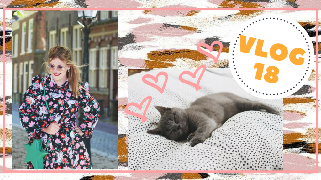 Vlog | kitty spam & shoppen in Amsterdam! #18