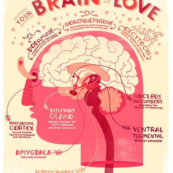 Een lesje in de liefde! | Waardoor roept verliefdheid zoveel emoties in je op?