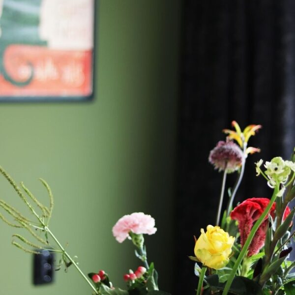 5 redenen waarom planten leuk en goed voor je zijn!